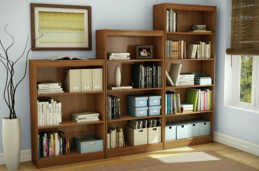 10 Cheap Bookshelves (That Are Actually Pretty Nice) | Book Riot