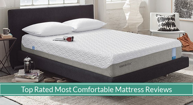 Best Rated Comfortable Beds (Reviews Updated For 2019) - MySleepyFerret