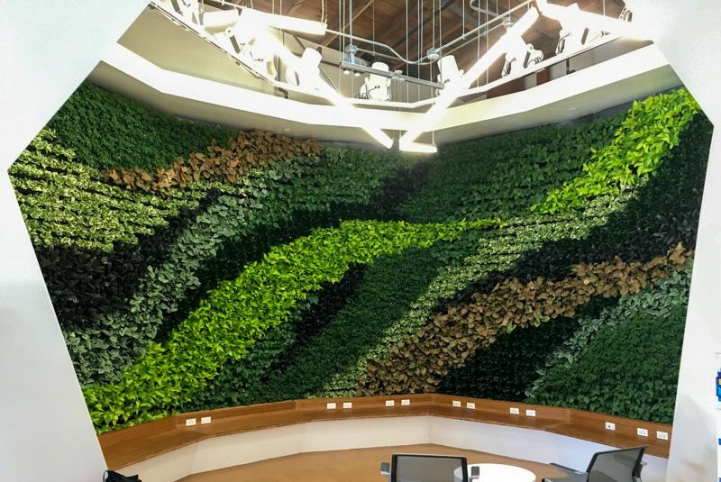 Living Walls u2013 Los Angeles u2013 Interior Plant Design |Your Plant Service