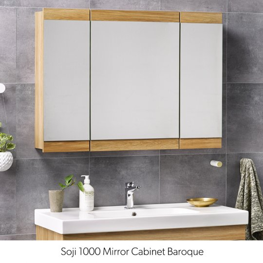 Bathroom Cabinets NZ Wall Storage Mirror Plumbing Plus With Regard