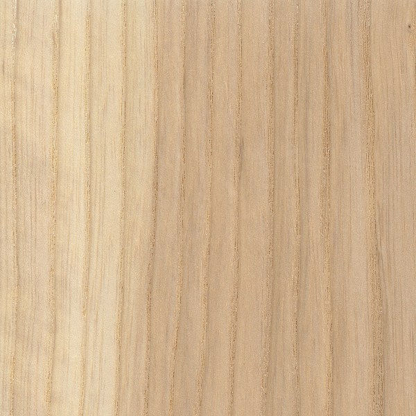 White Ash | The Wood Database - Lumber Identification (Hardwood)