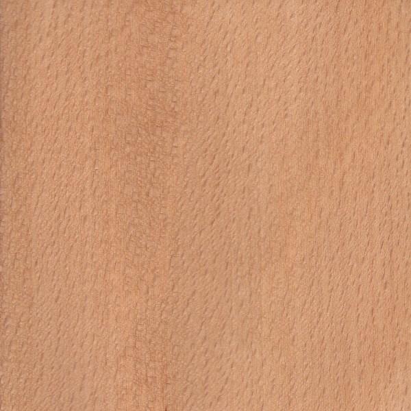 American Beech | The Wood Database - Lumber Identification (Hardwood)