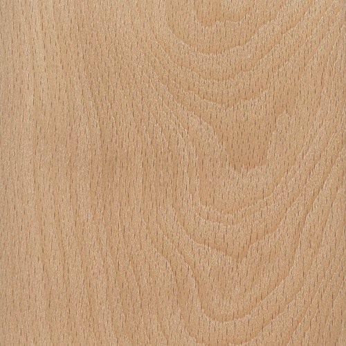 Beech (Fagus grandifolia) - Canadian Woodworking Magazine