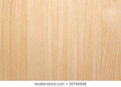 Beech Wood Images, Stock Photos & Vectors | Shutterstock