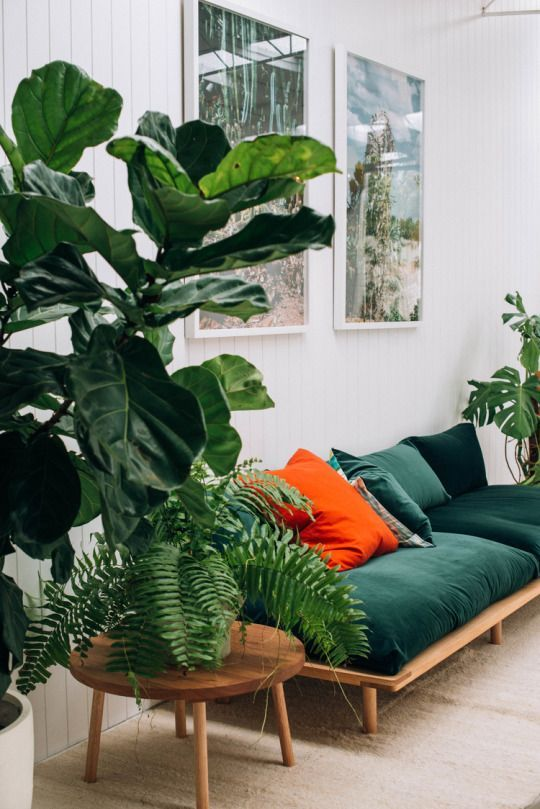 Green decoration inspirations