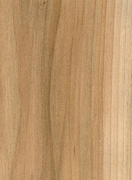 Red Maple   The Wood Database - Lumber Identification (Hardwood)