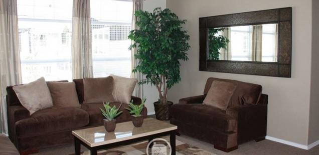 Amazing Living Room Mirrors 7