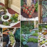 Amazingly Garden Ideas