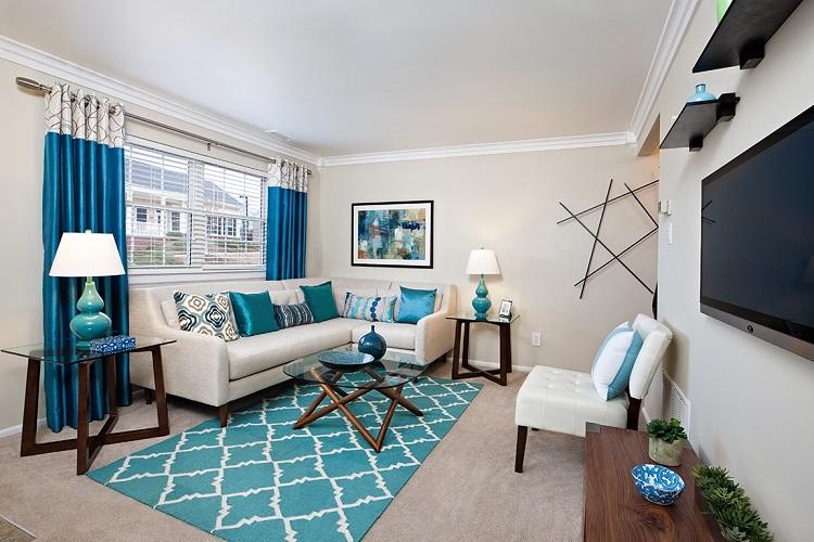 Apartment Living Room Decor A   Budget