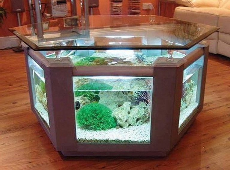 Aquarium Feature On Coffee Table Design Ideas