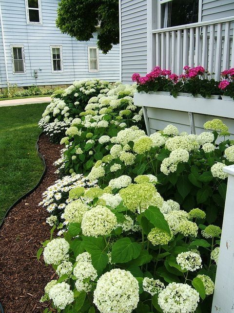 35 Beautiful Flower Garden for Your Front Yard | u2022 Homesteading