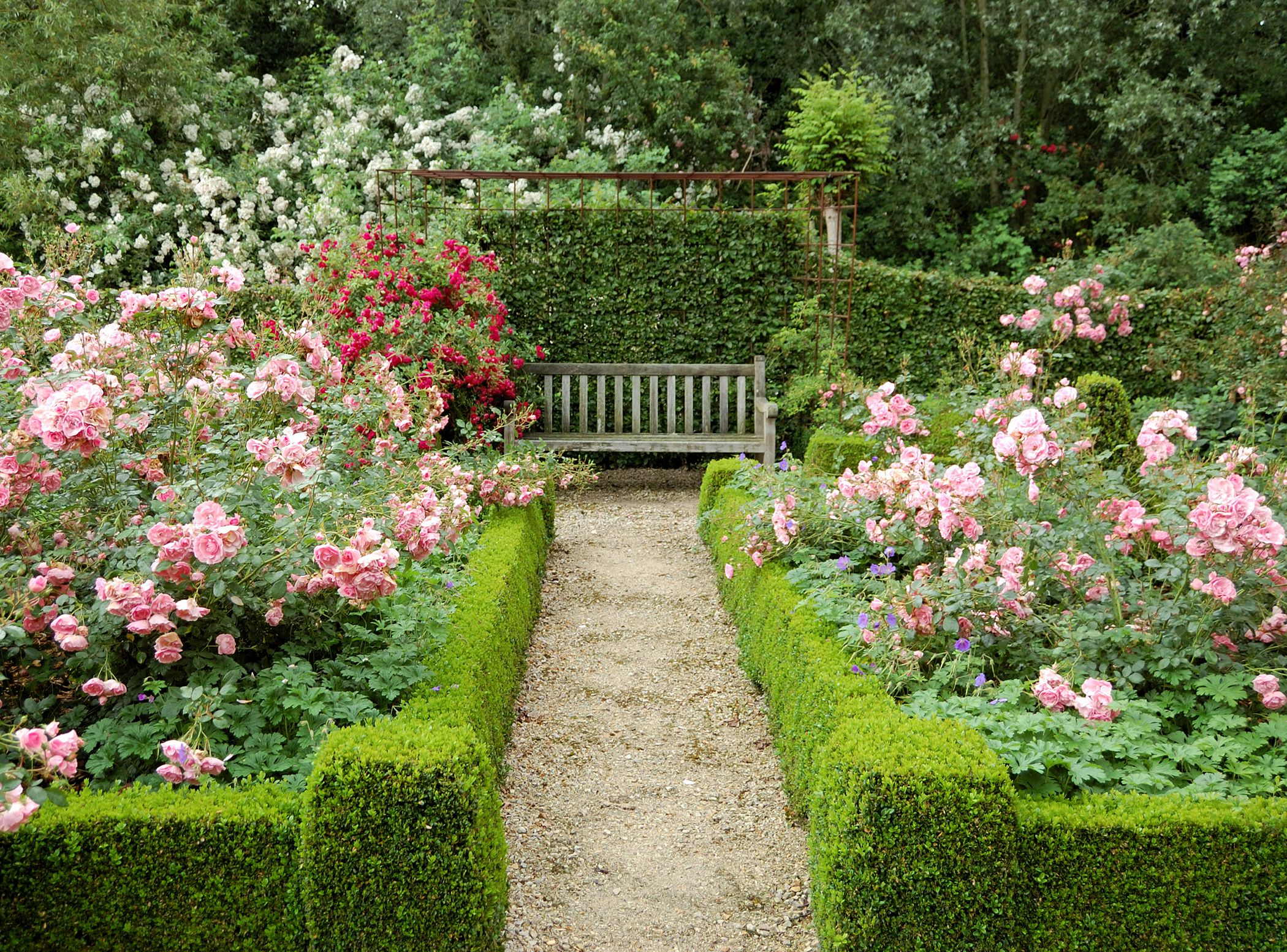 How To Make A Rose Garden Design - Garden Design Ideas