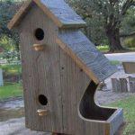 Bird House Ideas For Your Backyard Space