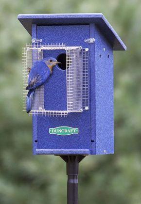 50 Amazing Bird House Ideas For Your Backyard Space   Bird houses