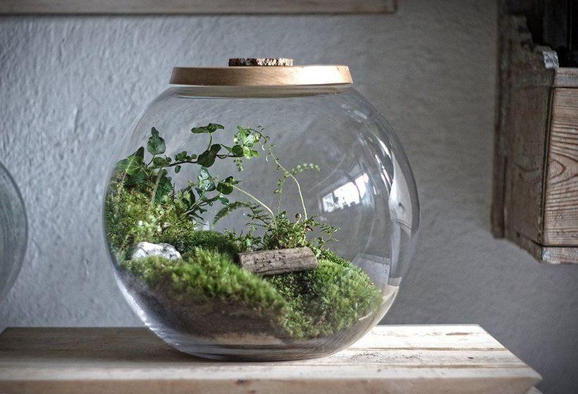 Awesome Bonsai Terrarium On The Jars 71 - DecOMG