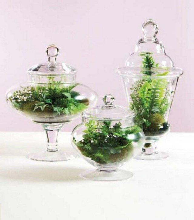 70+ Nice Bonsai Terrarium in the Jars Ideas | DIY & craft
