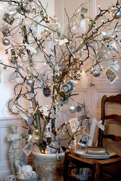 Dry branch tree, trimmed with delightful
