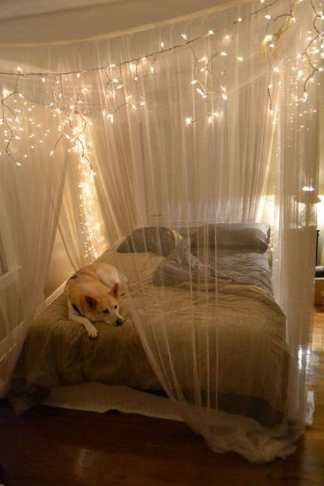 55 Inspiring Canopy Bed with Sparkling Lights Decor Ideas | Bedroom