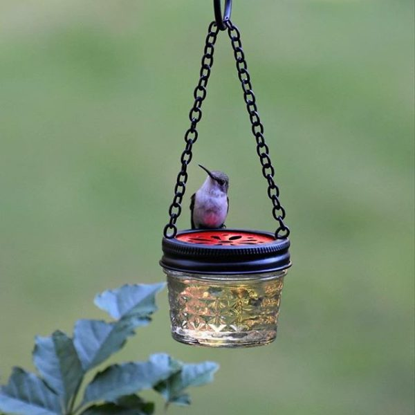 Diy Hummingbird Feeder Ideas