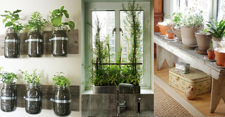 6 Indoor Gardening Ideas | Urban Cultivator