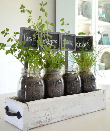 10 Indoor Garden Ideas to Cure the Winter Blues | Gardening | Garden