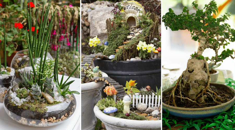 45 Amazing Indoor Garden Ideas: #27 is So Easy!