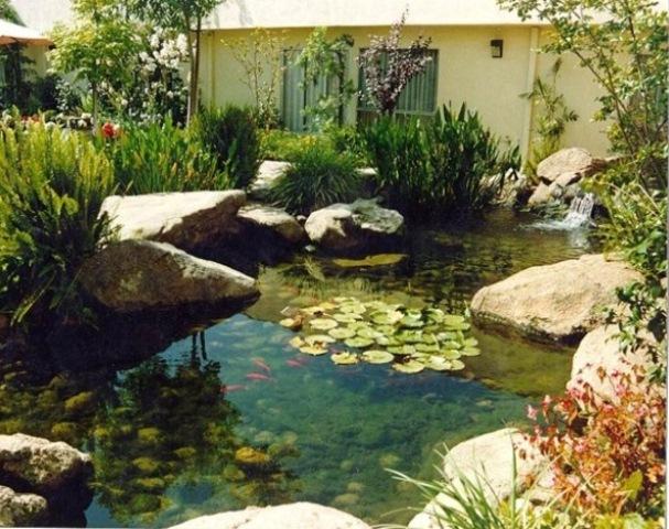 Modern Backyard Fish Pond Garden Landscaping Ideas 3