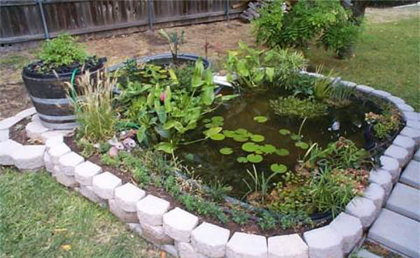 Modern Backyard Fish Pond Garden Landscaping Ideas 4