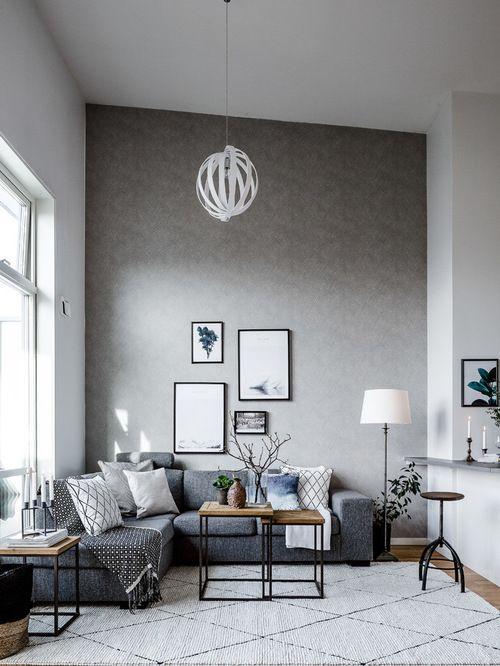 Scandinavian Living Room Design Idea with grey sofa, modern coffee