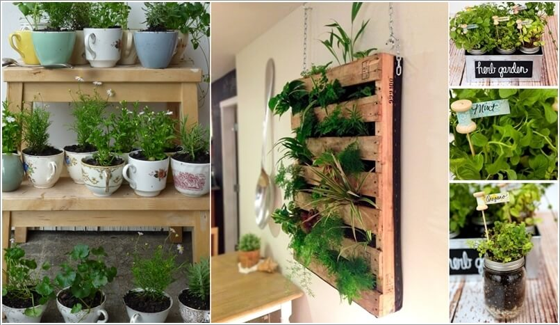 10 Cool DIY Ideas to Grow an Indoor Herb Garden u2013 Interior Design Blogs