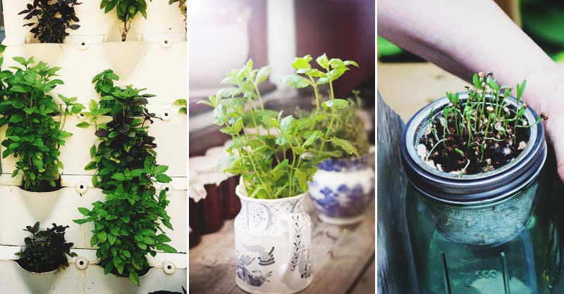 46 Indoor Herb Garden Ideas That Will Inspire You to Start Planting