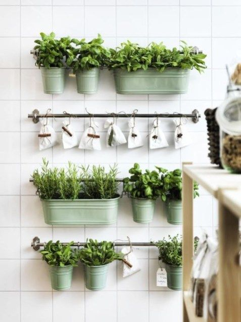 48 nice fresh ideas growing herbs gardens ideas | Herb garden | Herb