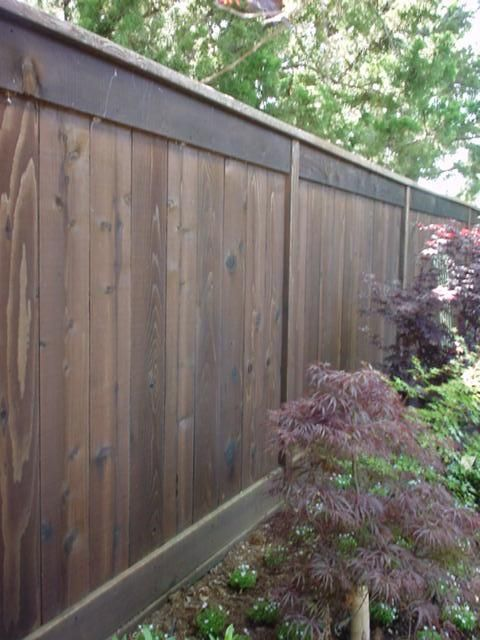 Cheap Fence Ideas | Eichler Fence Ideas | Mid-Century Modern Fences