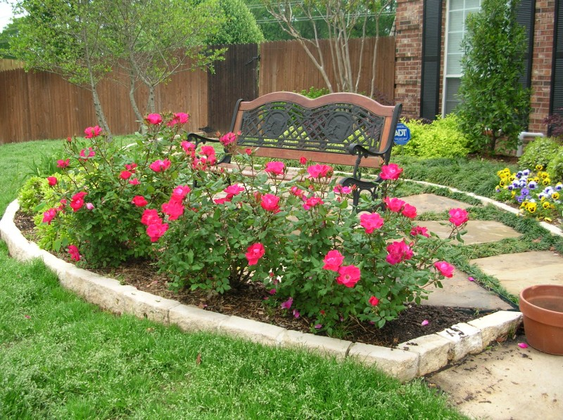 Flower, Plants & Trees | Green Meadows Landscaping Design | Lawn