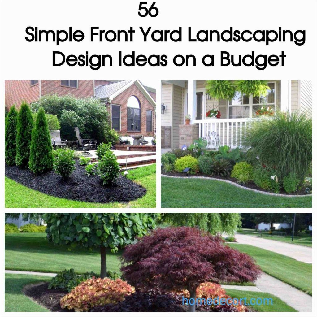 Simple Front Yard Landscaping Design Ideas 8