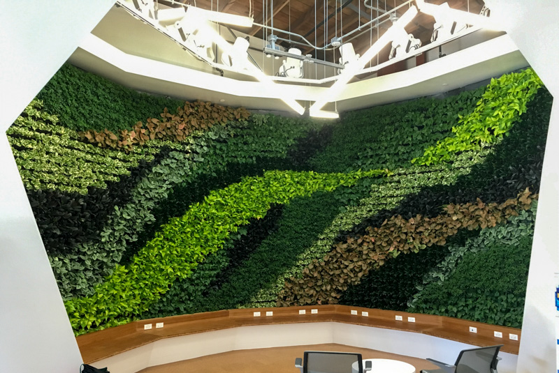 Living Walls u2013 Los Angeles u2013 Interior Plant Design |Your Plant Service