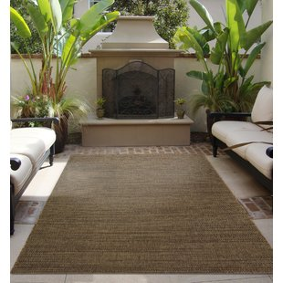 Solid Outdoor Rugs You'll Love | Wayfair