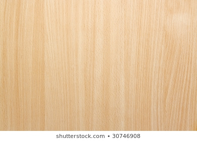 Beech Wood Images, Stock Photos & Vectors | Shutterstock