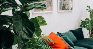 68 inspirations pour mettre du vert dans sa déco | cute & little