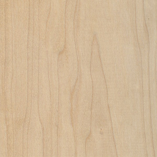Hard Maple | The Wood Database - Lumber Identification (Hardwood)