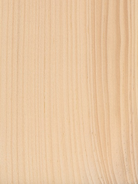 Eastern White Pine | The Wood Database - Lumber Identification