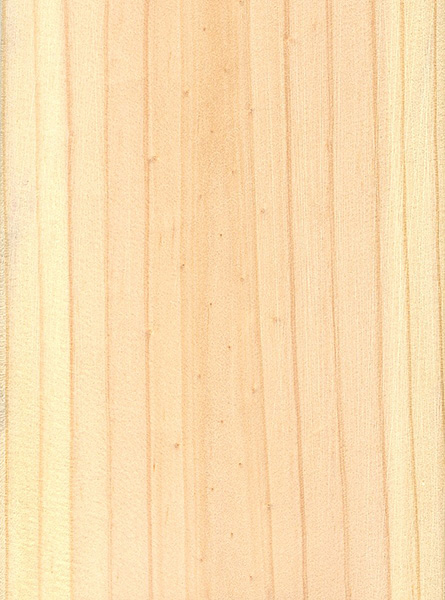 Advantages and disadvantages Pine wood