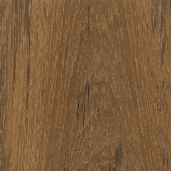 Teak | The Wood Database - Lumber Identification (Hardwood)