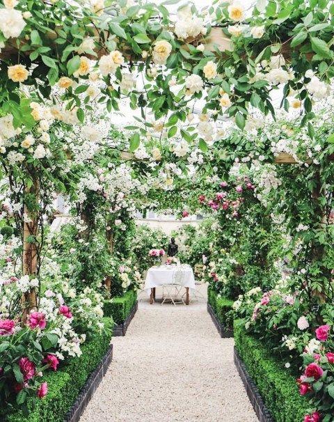 44 Beautiful Rose Flower Garden Ideas | Roses
