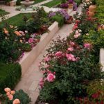 Beautiful Rose Garden Ideas