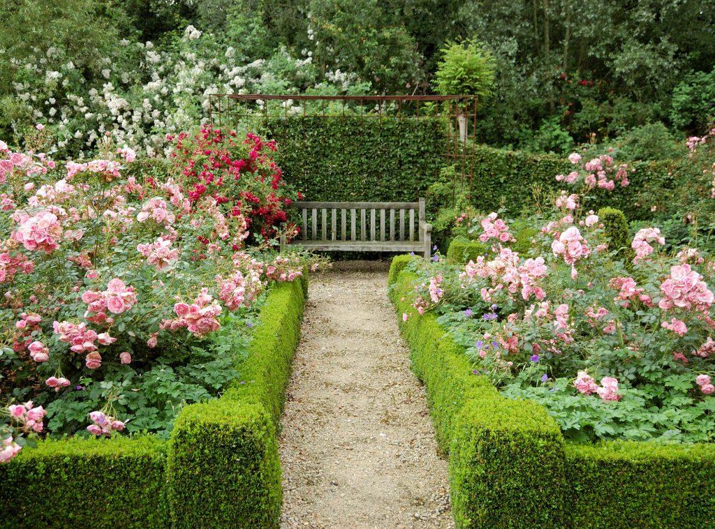 Beautiful Rose Garden Ideas 3
