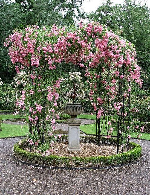 40+ Beautiful Pink Rose Gardening Ideas For Backyard - TopDesignIdeas