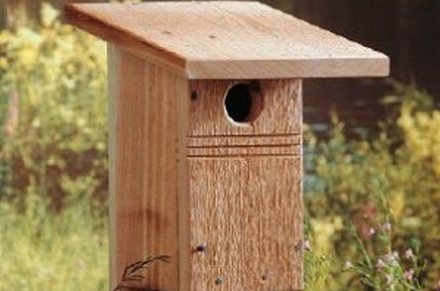 DIY Birdhouse for Bluebirds | Backyard Projects - Birds and Blooms
