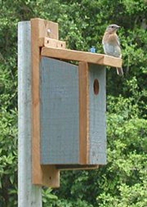 50 Amazing Bird House Ideas For Your Backyard Space | BIRDS, BEES