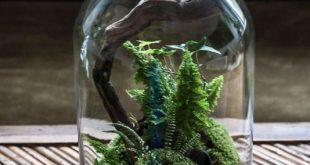 Awesome Bonsai Terrarium On The Jars 67   Sewing/crochet (and random